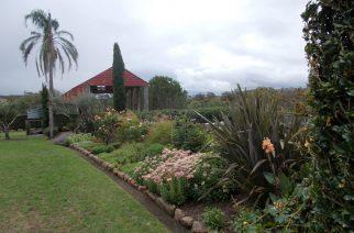 Border garden bed at Glenmore House