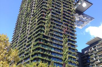 Green roofs and walls could boost property values by 15 per cent