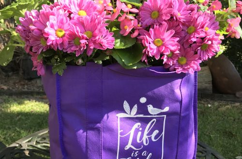 Calling all creative gardeners! QLD Garden Expo competition reminds Queenslanders to BYO bag from 1 July