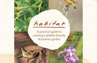 Habitat – – A practical guide to creating a wildlife-friendly Australian garden