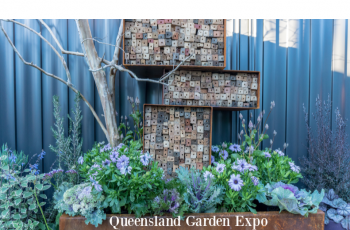 Qld Garden Expo celebrates its 35 year anniversary with a special tour offer for HMAA members