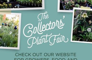 Collector's Plant Fair April 6-7th