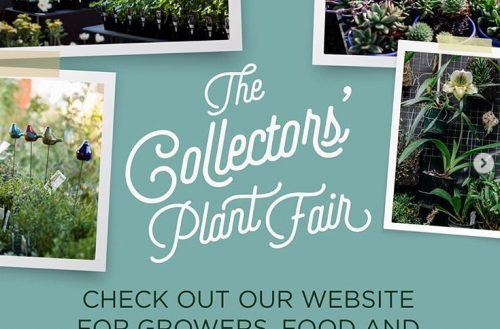 Collector's Plant Fair April 6-7th