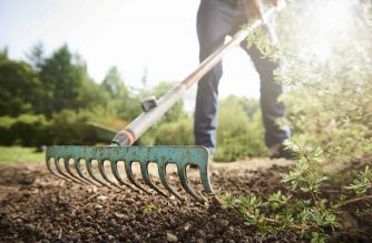 Good news for Australian horticulture