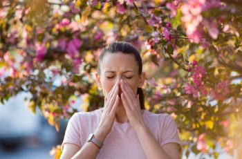 Don't blame flowers for your hay fever