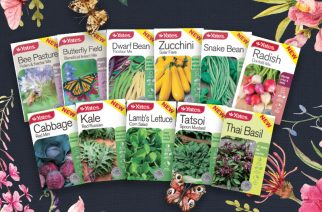 Fantastic new seeds from Yates