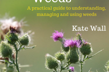 New book – Working With Weeds, A Practical Guide to Understanding, Managing and Using Weeds