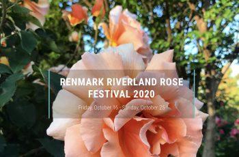 The Renmark Riverland Rose Festival