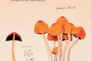 Australian Garden History journal, October issue