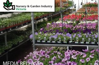 GARDEN CENTRES STRUGGLE TO MEET PUBLIC DEMAND FOR PLANTLIFE