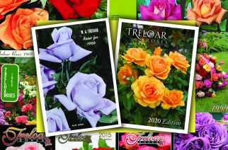 TRELOAR ROSES CEASE PRODUCTION OF ICONIC PRINTED CATALOGUE