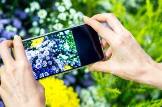 HOW TO TAKE GREAT PHONE PHOTOS – HMAA Webinar