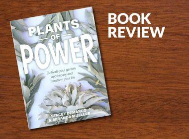 Plants of Power By Stacey Demarco & Miranda Mueller